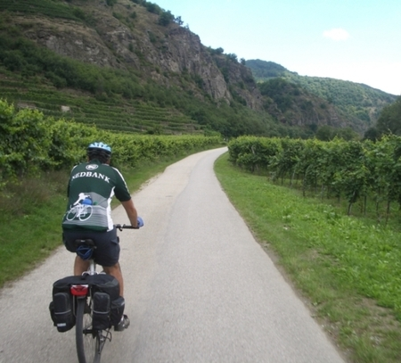 one of our clients cycling through a vineyard in Austria