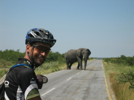 tda_rider_on_the_elephant_highway_in_botswana111