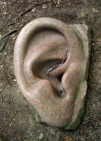 van_goghs_ear