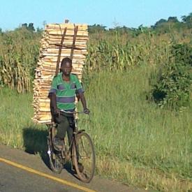 Bike_cargo