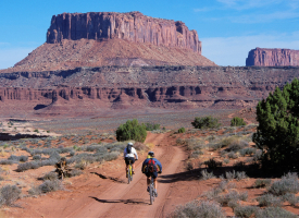 Bikers on the White Rim Road