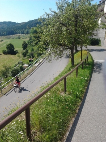 Lisa descend a steep hill on the Danube Cycleway