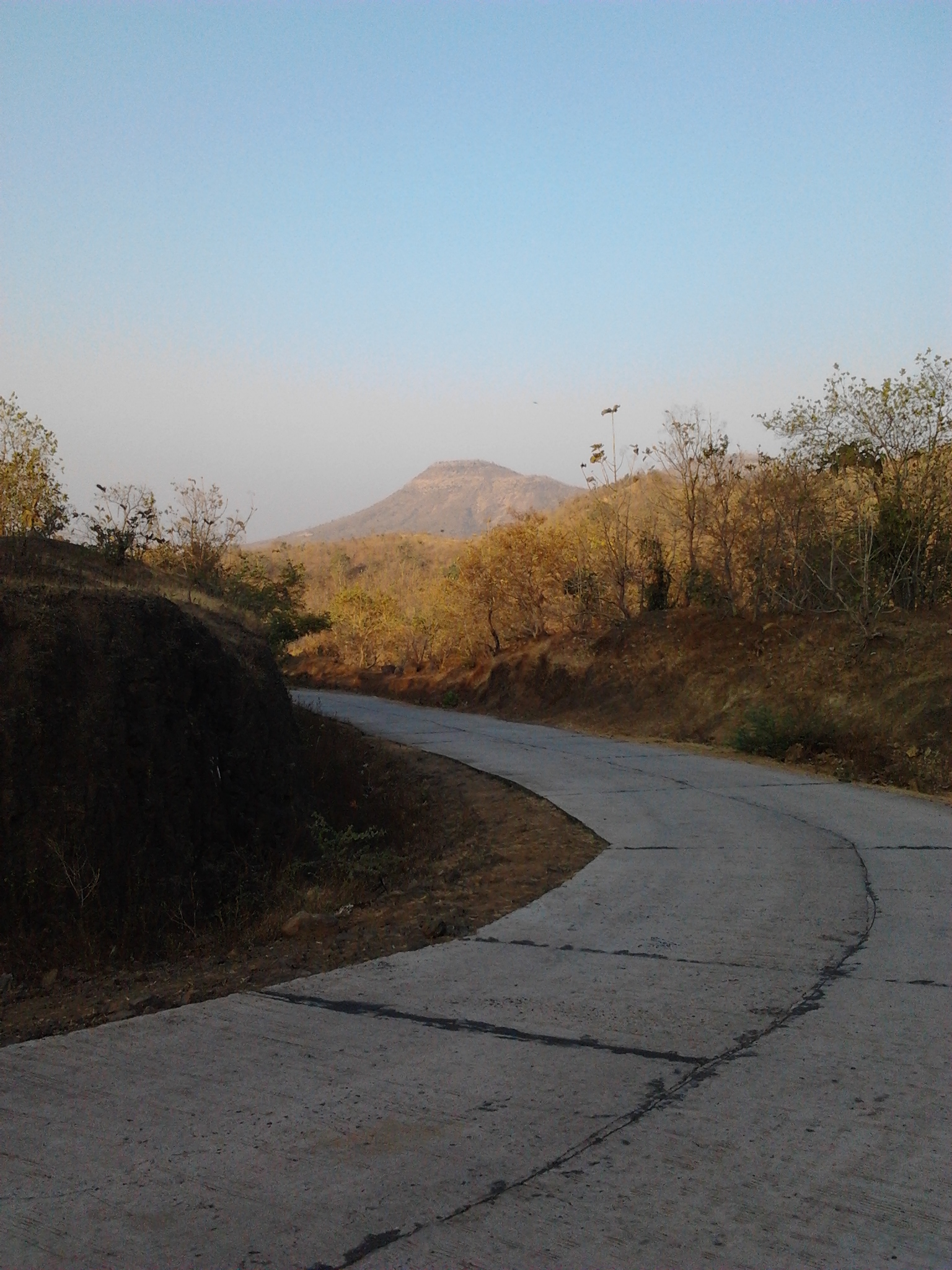 The Road to Mandu