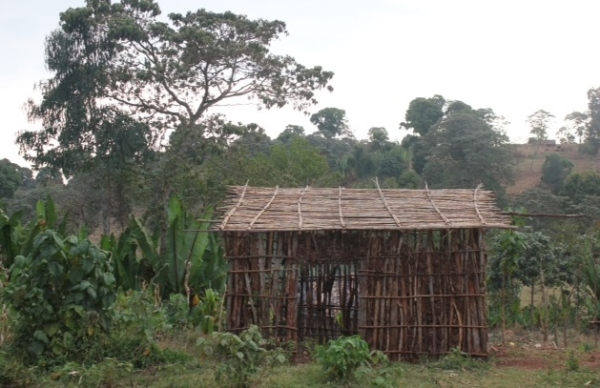 Ride Thru Sheshemene | TDA Global Cycling House Made Of Sticks Cartoon