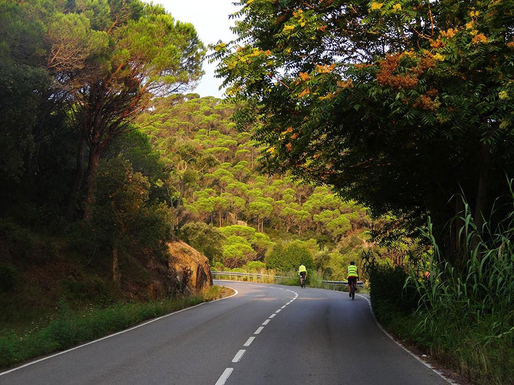 Nice-road