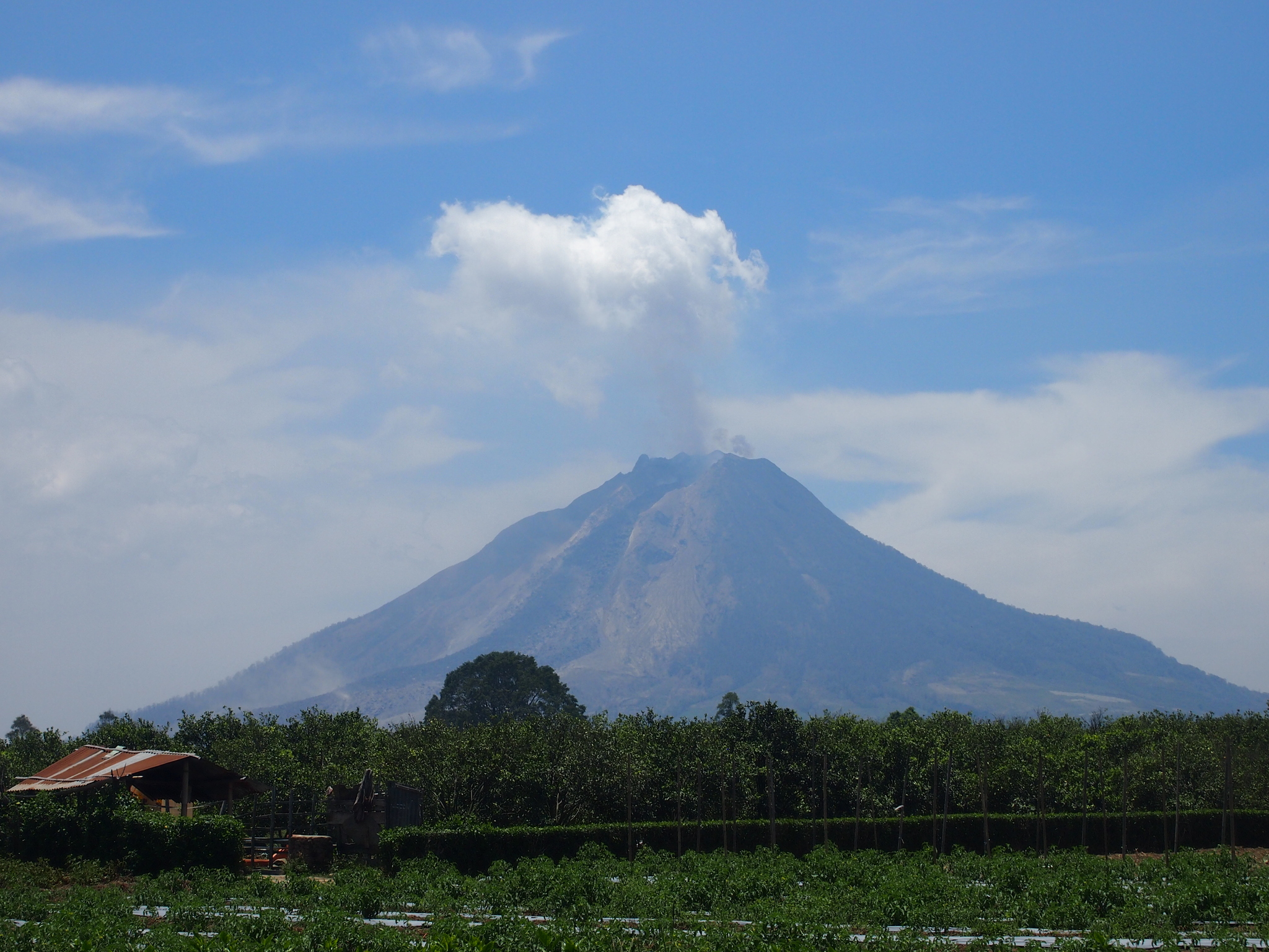 On Bicycles and Volcanoes