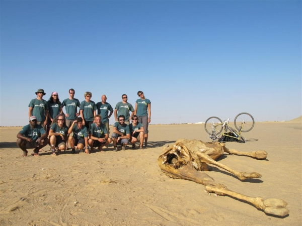 Staff photo with Alice the Camel