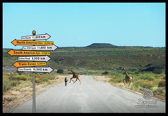 TDA_giraffe_image_v1