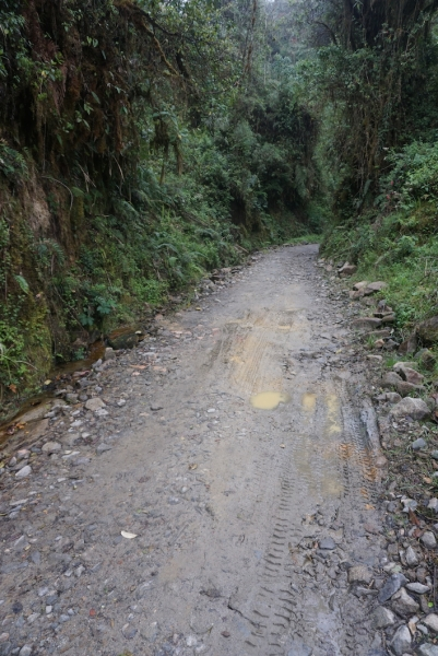 Leaving Manizales, riders were faced with a brutal climb up to a 4,000+ meter off-road pass near Parque Nacional Nevado.