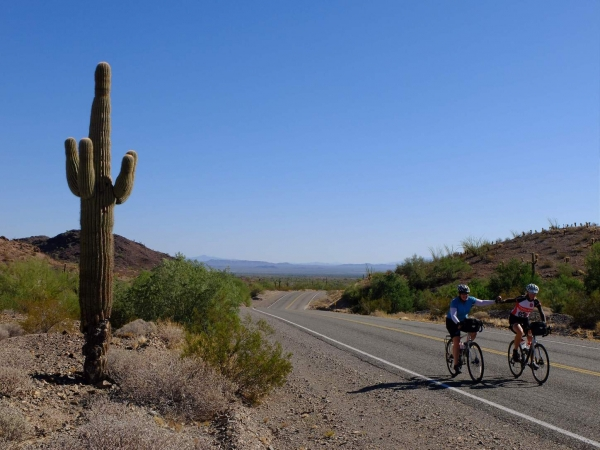 Fiona and Beate ride past a huge Saguaro cactus.