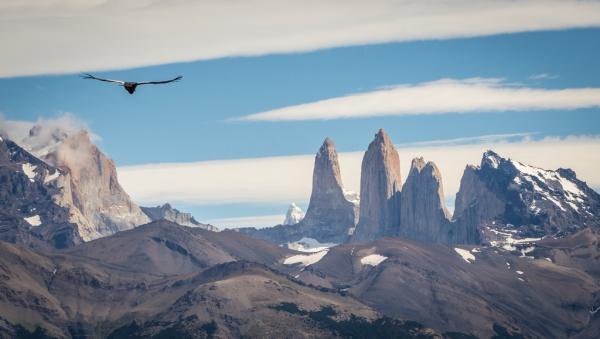 Torres del Paine & Condor  Timothy Dhalleine