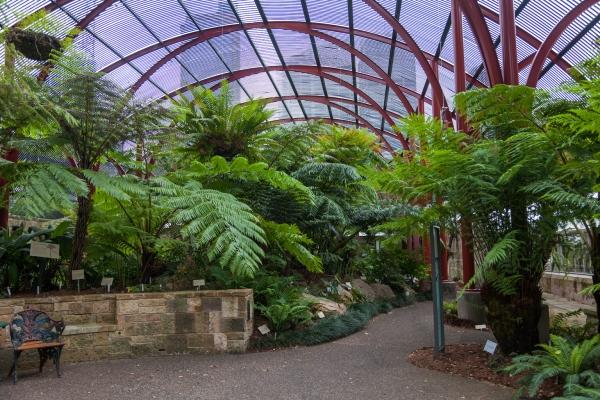 botanical-gardens-3