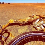 Rubber On Concrete, Sand, Mud and Dirt: Schwalbe Tires In Africa