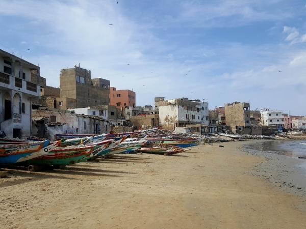 Reflections From Dakar