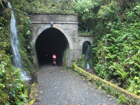 A change of pace – the Remutaka Rail Trail