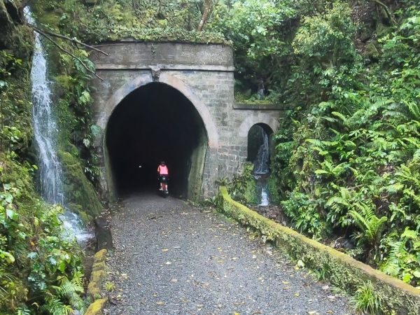 A change of pace - the Remutaka Rail Trail
