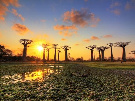 7 Magical Reasons To Visit Madagascar