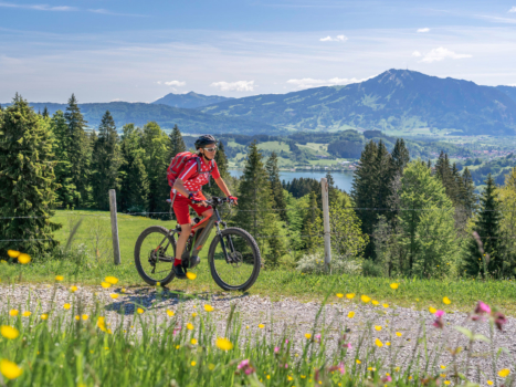 E-bikes Are Now An Option On Our Viva Italia & Taiwan Coastal Loop Tours